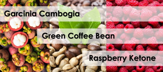 Garcinia Cambogia Green Coffee Bean Raspberry Ketones The
